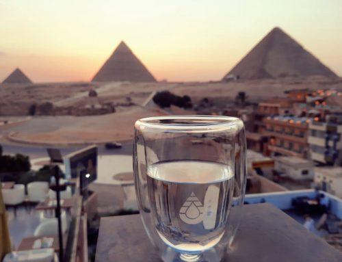 Ritec en la Sahara Expo (El Cairo)